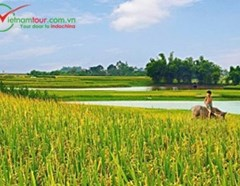 Countryside Journey 2 days - Giao Thuy