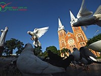 Wonderful Ho Chi Minh and Mui Me beach 6D5N